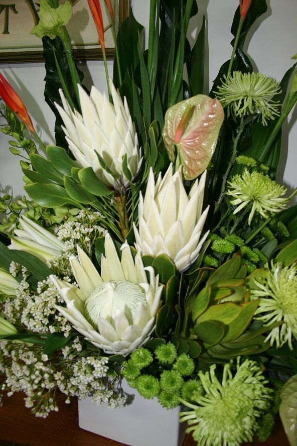 Large corporate flowers - white proteas.