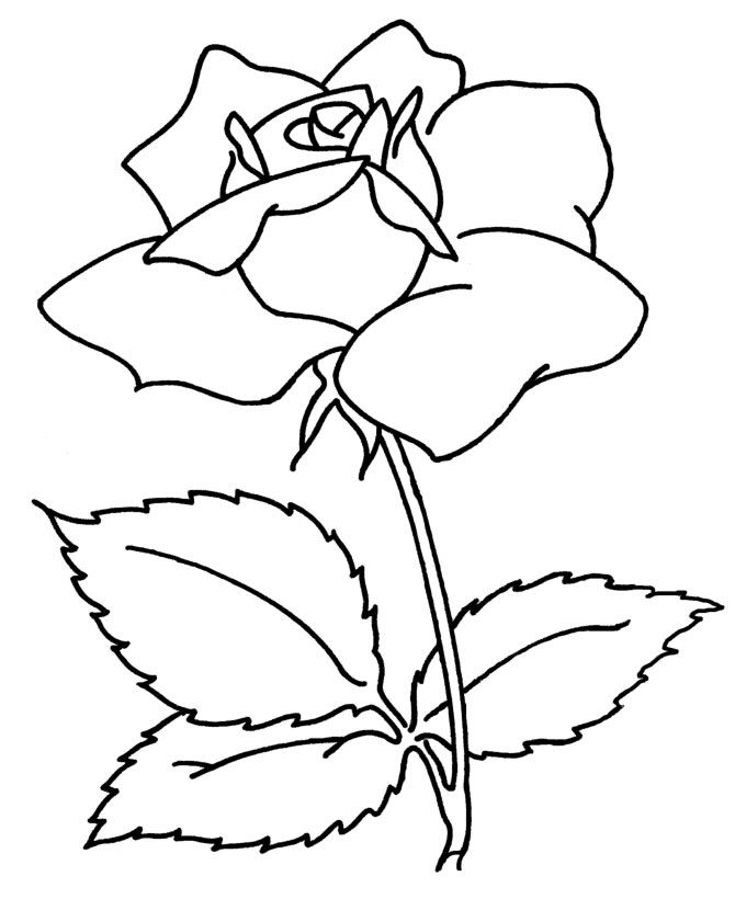 flower printables flowers coloring pages - Colour In Stencils