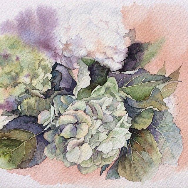 "705 Likes, 29 Comments - Elena (@olena.duchene) on Instagram: ""Зеленая гортензия.  #рисую_все_что_вижу #art #artwork #paint #painting #draw #drawing #watercolor…"""