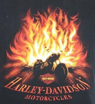 Large-Harley-Davidson-Flames-Bonfire-Campfire-Black-Dealer-T-Shirt-Hollywood-CA