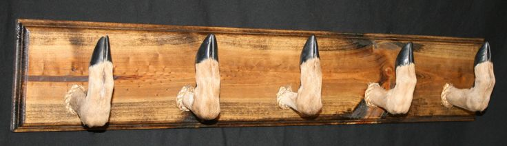 Deer Hoof Coat Rack Taxidermy Foot Walnut Stain Finished Plaque Handmade Entryway Decor - pinned by pin4etsy.com