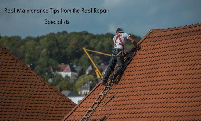 Roof Repair Sydney Roof Restoration Roof Leak Repair In Sydney In 2020 With Images Roof Repair Roof Restoration Roof Maintenance