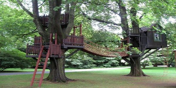 Awesome DIY Backyard Ideas for Summer with Tree Perch and Lookout Deck