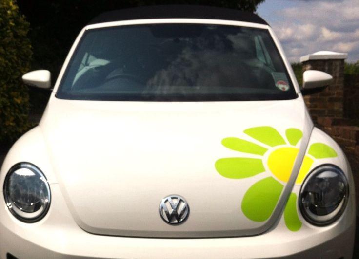 Giant daisy car campervan or caravan decal sticker http www hippymotors