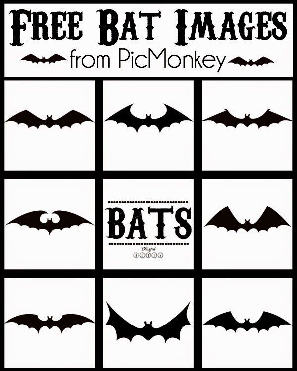 Free Halloween Bat Images from PicMonkey @ Blissful Roots