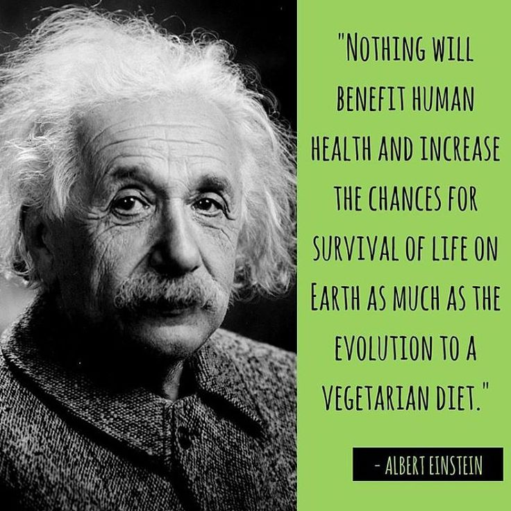 Best  Albert Einstein Vegan Ideas On Pinterest Albert