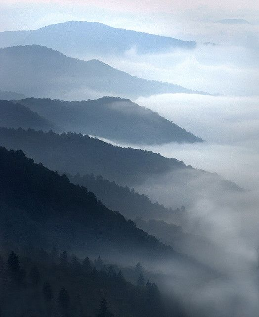 Smoky Mountain morning in North Carolina | Andrew on Flickr