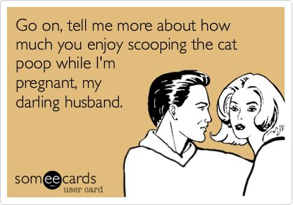 Go on, tell me more about how much you enjoy scooping the cat poop while I'm pregnant, my darling husband.
