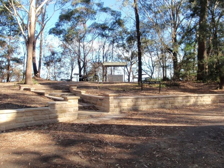 Ironbark and Flannel Flower circuit walking track
