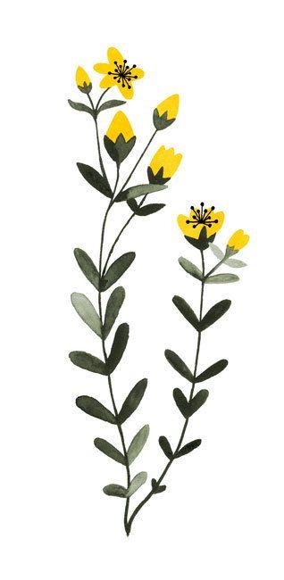 11 Healthy Herbs for Margriet More by Valesca van Waveren