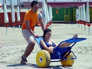 168 Best Adaptive Sports Amp Recreation Images On Pinterest