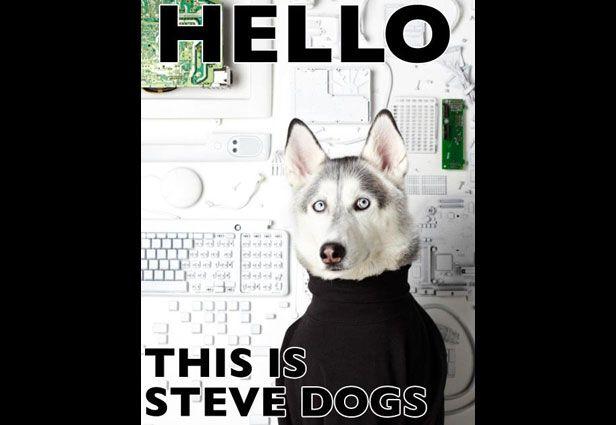 yes dog meme - photo #22