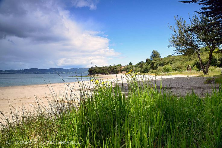 Playa solitaria - Peninsula de Lacuy (Isla de Chiloe)