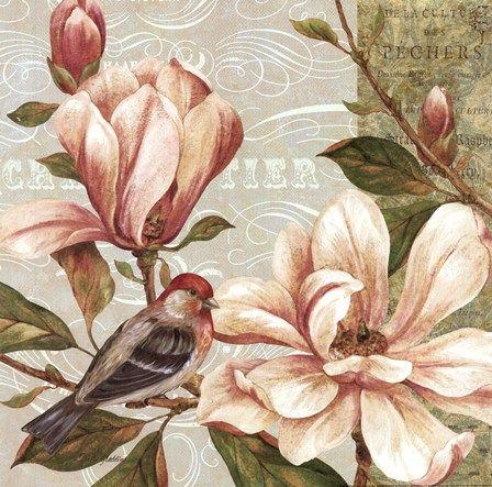 Magnolia Collage II - mini by Pamela Gladding art print