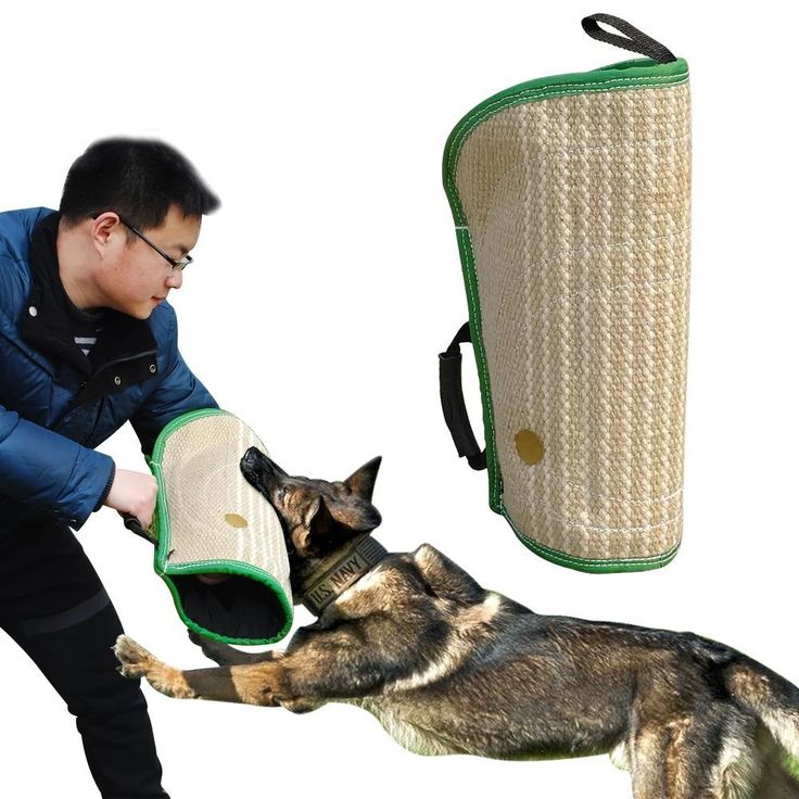 Didog Dog Biting Arm Sleeves for Young Dogs Work Dog Puppy Training, Professional Intermediate for Both Left and Right Hand,Fit German Shepherd Mastiff >>> Want additional info? Click on the image. (This is an affiliate link and I receive a commission for the sales)