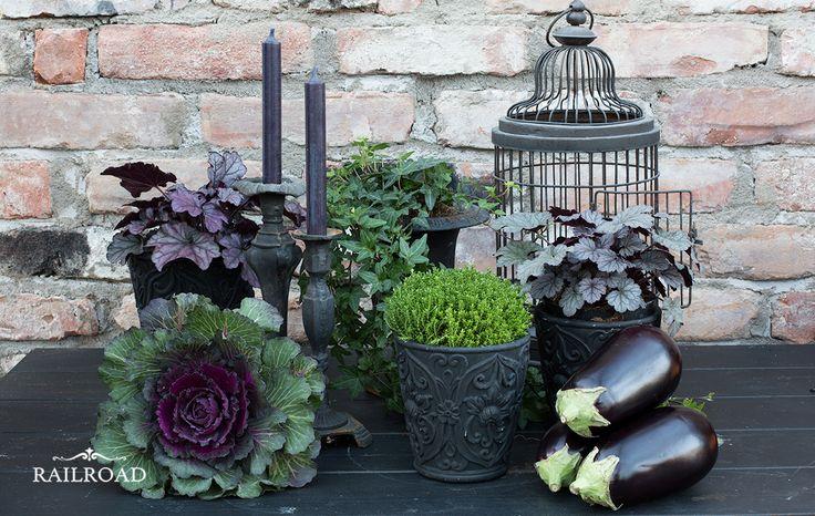Black and green in the greenhouse   The House on the Hill. Hög tid att göra det höstfint i växthuset. Det används mer som ett uterum med växter än som ett traditionellt växthus. Lekt runt lite idag med mycket svarta färger, grönt och mörkt lila. Känns helt rätt. Lite bildprov nedan. Ska fortsätta i