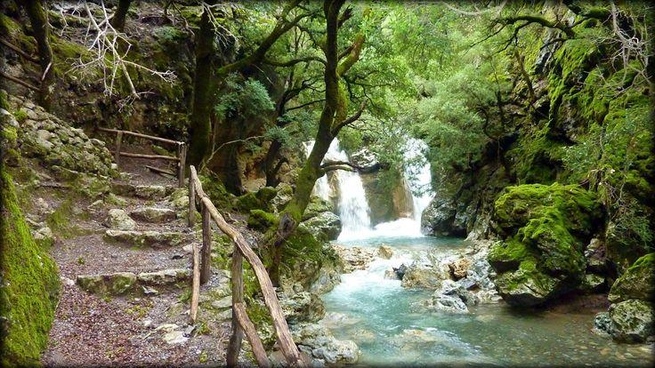 Rouvas Forest in Heraklion