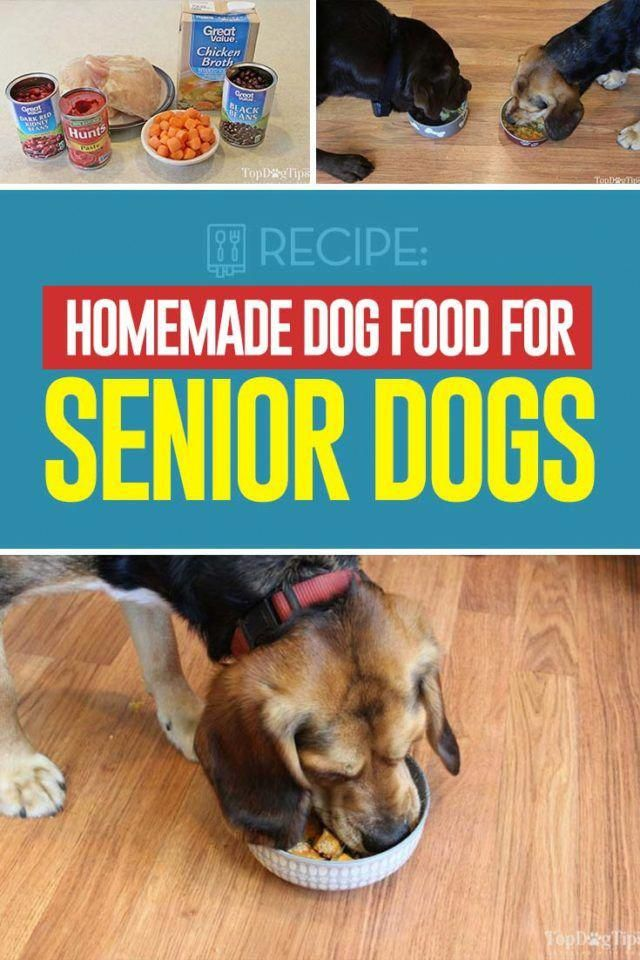 Recipe Homemade Food For Senior Dogs Dog Food Recipes Homemade