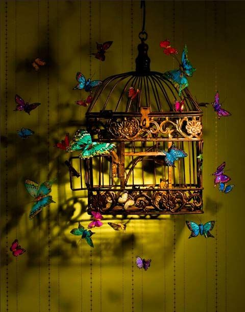 bird cage surrounded by BUTTERFLIES add a light. how cool for kids room