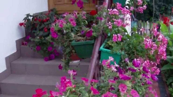 Sławne Piękne ogrody kwiatowe.Wiele odmian kwiatów.