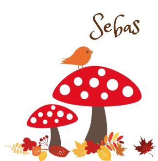 GEboortekaartje | Sebas Herfst, paddestoelen, seizoenen