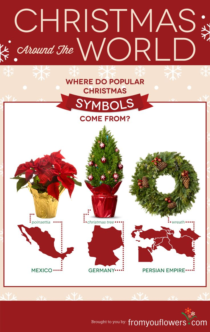17 best facts infographics images on pinterest facts truths find out the origins of popular christmas symbols like the christmas tree and wreath part buycottarizona Image collections