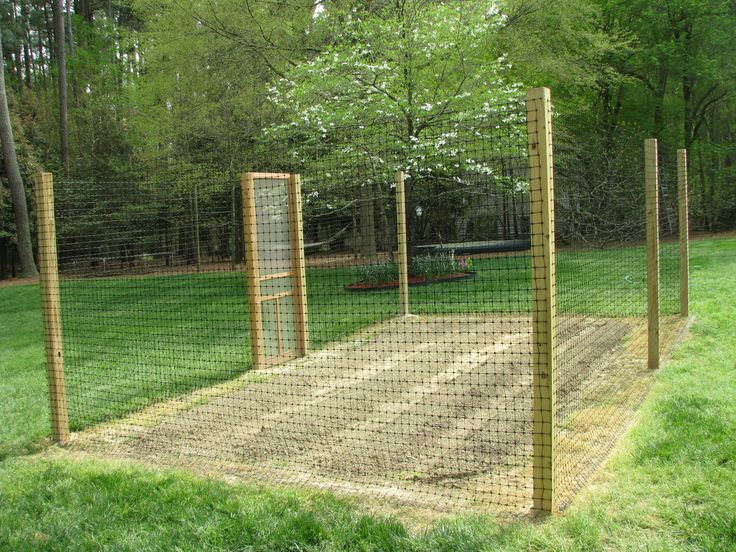 Simple Deer Proof Garden Fence
