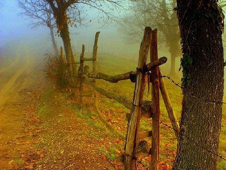 """""""autumn door"""" from nature at desktopnexus.com"""