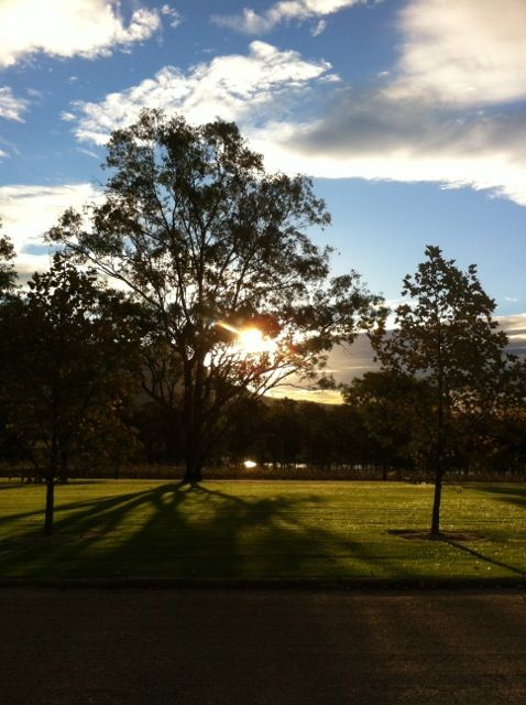 Hunter Valley Sunset