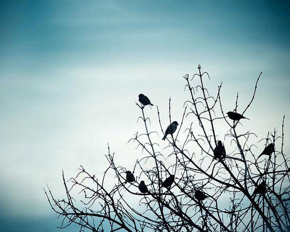 Morning Mist by Angeliki Papavasileiou on Etsy