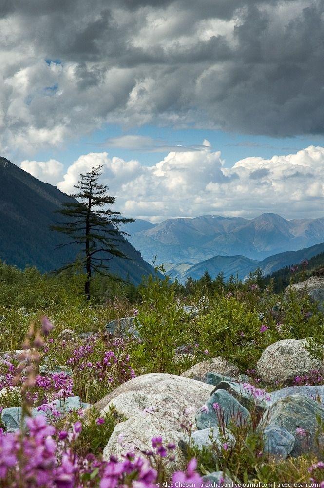 Belukha of Altai
