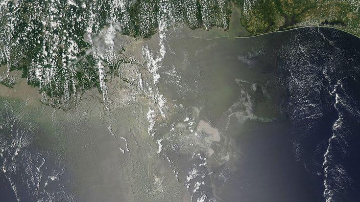 Der Ölteppich breitet sich aus-Diese am 10. Juni 2010 veröffentlichte Satellitenaufnahme verdeutlicht einmal mehr das gigantische Ausmaß der Katastrophe im Golf von Mexiko: Es zeigt den sich ausbreitenden Ölteppich nach Sinken der Plattform Deepwater Horizon, silbergrau schimmert das Öl im Licht der Sonne. Mehrere Millionen Barrel Rohöl – ein Barrel sind 159 Liter – flossen ins Meer. Die Ölpest bedrohte das Leben der gesamten Flora und Fauna im Golf – und darüber hinaus.