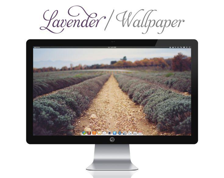 Lavender Wallpaper by bokehlicia.deviantart.com on @deviantART