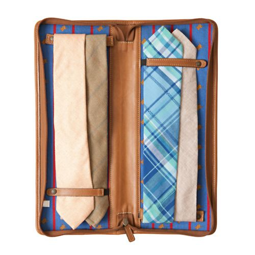 Tie Travel Case (a very cool Father's Day gift!)