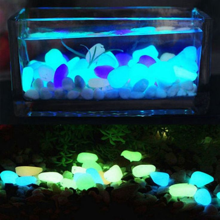 Light up a vase, a fish tank, or any other animal terrarium with these glow in the dark, illuminating stones. They capture the energy from light sources in the day so they are able to light up for you