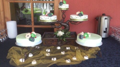 Tortas imagina un hermoso bonsay