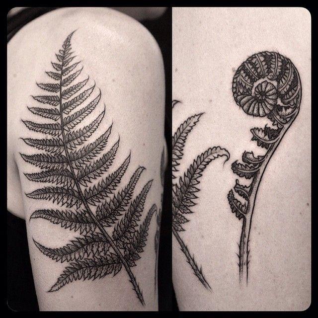 Black fern tattoo