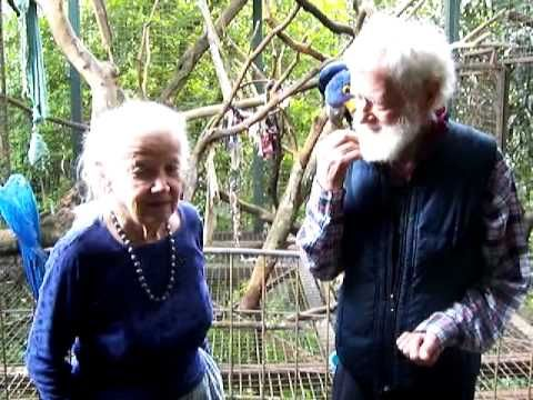 MARGO & RICHARD from AMIGOS DE LAS AVES SCARLET MACAW RELEASE PROJECT IN.. chap 4/5.