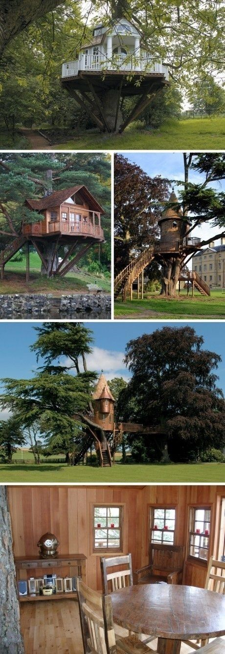 Awesome treehouses by karla