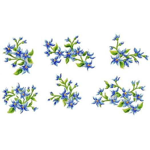 38 best jasmine images on pinterest botanical illustration botany and gardenias. Black Bedroom Furniture Sets. Home Design Ideas