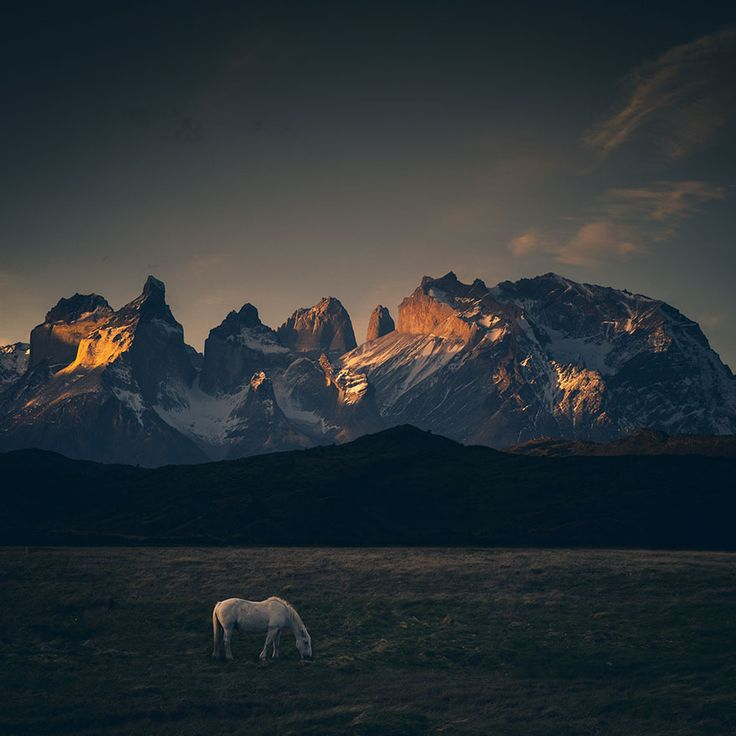 Photographer Travels To The Edge Of The World To Capture The Breathtaking Beauty Of Patagonia   Bored Panda