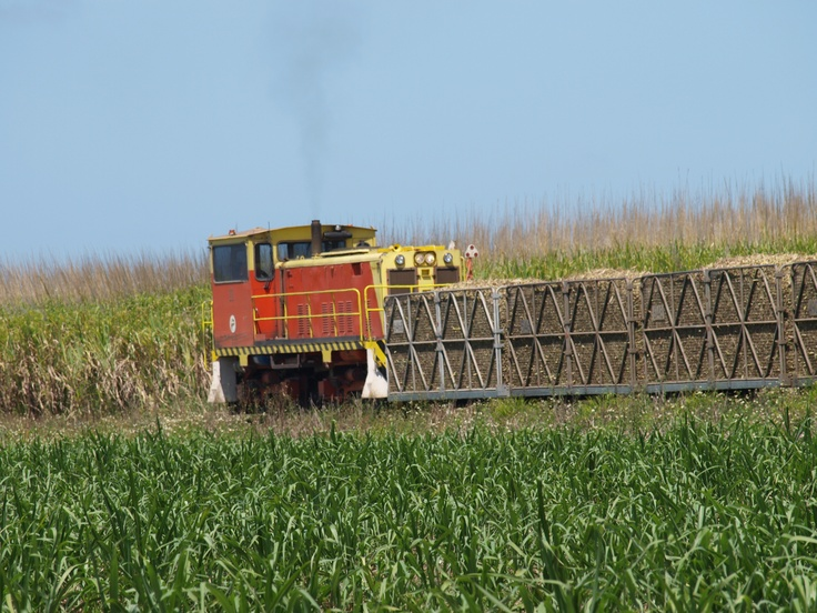Loading cane at a farm near Proserpine