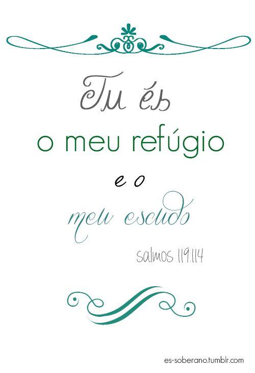 Leia Salmos 119, o maior capítulo em extensão da Bíblia.