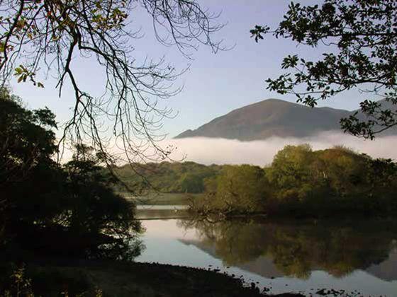 Muckross National Park Co. Kerry