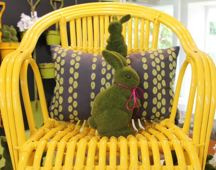Hoppin' around the colourful cushions.