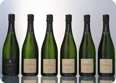 Champagne Agrapart www.champagne-agrapart.com