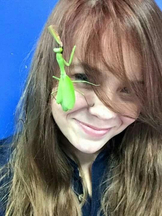 Mantis and human