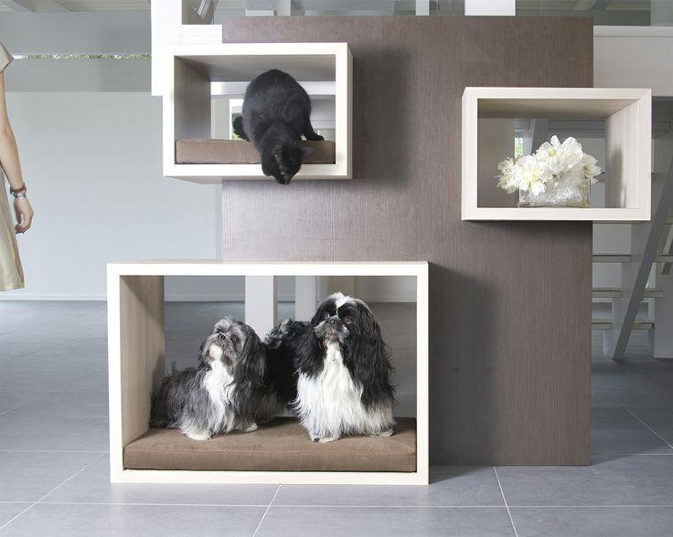 Ein Pet Raumteiler Für Das Moderne Haus: Ob Als Ablagefläche Oder Als  Möbelstück Für