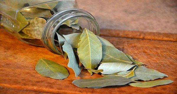 Brûlez des feuilles de laurier dans la chambre et découvrez ce qui arrive en seulement 10 minutes!