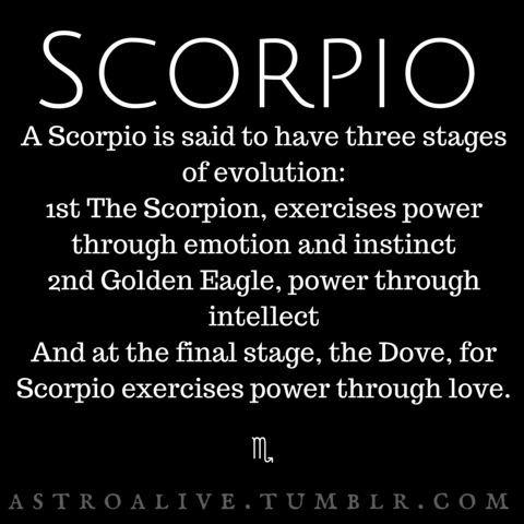 scorpio characteristics | Tumblr | Scorpio | Pinterest | Scorpio ...